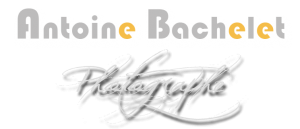 Site web Logo